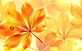 Design pictures, yellow leaves, insect, ladybug, collage HD wallpaper