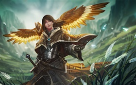 Fantasy girl, warrior, armor, owl wings HD wallpaper