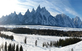 Grand Teton National Park, Wyoming, USA, winter, mountains, thick snow HD wallpaper