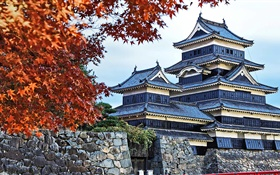 Pagoda, Japan, autumn, trees HD wallpaper