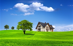 Summer, house, trees, field, green grass HD wallpaper