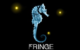 X-ray, Fringe, Fox TV series, hippocampus HD wallpaper