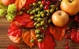 Autumn, fruits, leaves, berries, apples