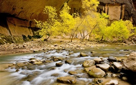 Autumn, river, stones, trees, yellow leaves HD wallpaper