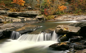 Autumn, trees, red leaves, rocks, creek HD wallpaper