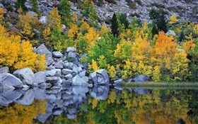 Autumn, trees, rocks, lake, water reflection HD wallpaper