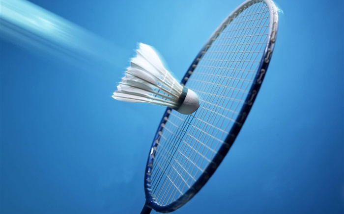 Badminton and racket, blue background Wallpapers Pictures Photos Images