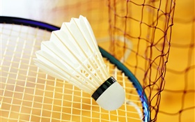 Badminton and racket HD wallpaper