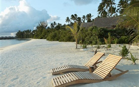 Beach, chair, palm trees, tropical HD wallpaper