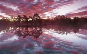 Beautiful dusk, trees, lake, water reflection, red clouds HD wallpaper