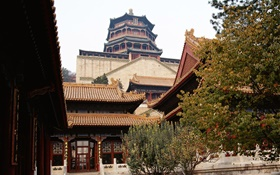 Beijing Forbidden City, China HD wallpaper