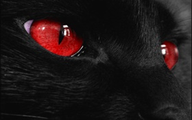 Black animal face, red eyes HD wallpaper