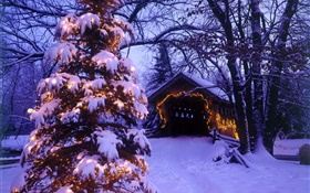 Christmas tree, snow, house, trees HD wallpaper
