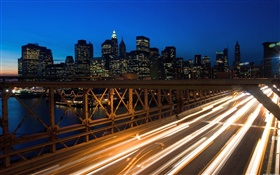 City night, bridge, traffic lights, buildings HD wallpaper