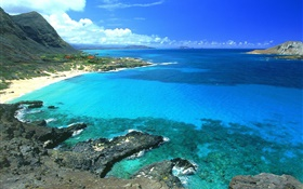 Coast, blue sea and sky, Hawaii, USA