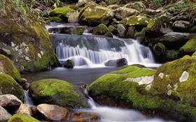Creek, waterfalls, stones, moss, nature scenery HD wallpaper