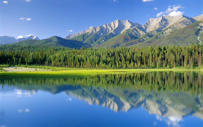 Dog Lake, mountains, forest, Kootenay National Park, British Columbia, Canada Wallpapers Pictures Photos Images