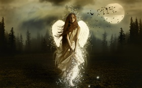 Fantasy angel girl, white wings, night, moon, birds HD wallpaper