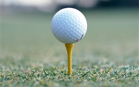 Golf ball close-up HD wallpaper