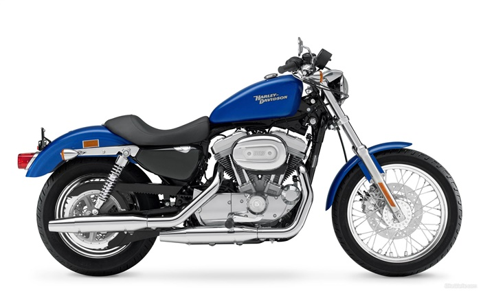 Harley-Davidson 883 motorcycle, blue and black Wallpapers Pictures Photos Images