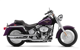 Harley-Davidson motorcycle, Fatboy HD wallpaper