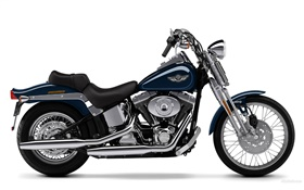 Harley-Davidson motorcycle, Springer Softail HD wallpaper