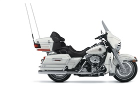 Harley-Davidson white motorcycle HD wallpaper
