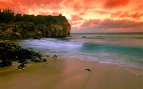 Hawaii, USA, beach, coast, sea, red sky, sunset HD wallpaper