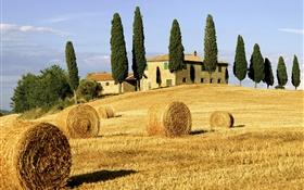 Haystacks, fields, houses, trees, Italy HD wallpaper