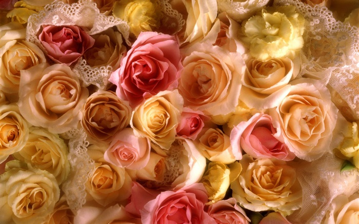 Many rose flowers, yellow and pink Wallpapers Pictures Photos Images
