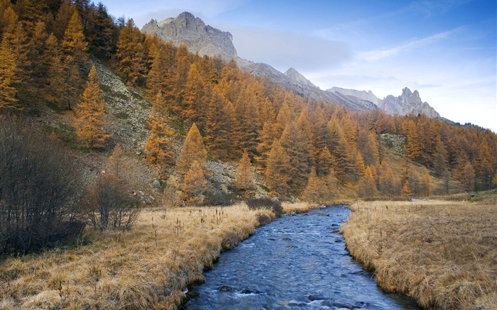 Mountains, trees, grass, river, blue sky Wallpapers Pictures Photos Images