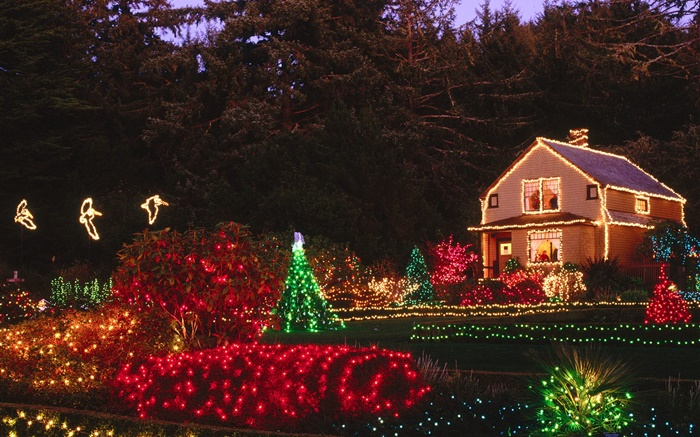 Night, colorful lights, house, Christmas Wallpapers Pictures Photos Images