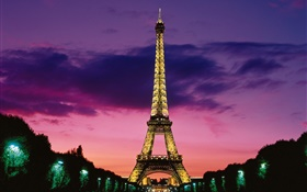 Night view the Eiffel Tower, lights, Paris, France HD wallpaper