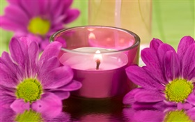 Purple chrysanthemum flowers, candle, fire, SPA theme HD wallpaper