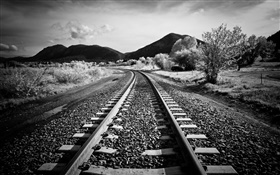 Railway, trees, mountains, black white style HD wallpaper