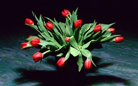 Red tulip flowers, bouquet, vase HD wallpaper