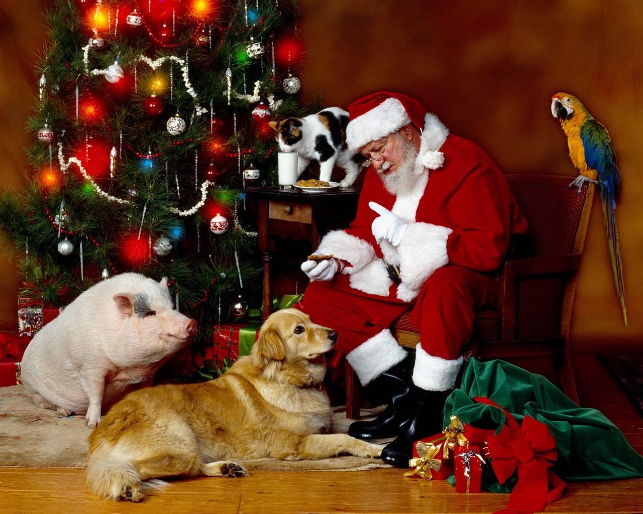 Christmas santa claus