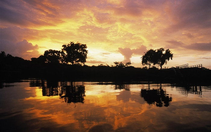 Sunset over forest, lake, Guyana Wallpapers Pictures Photos Images