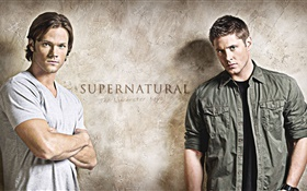Supernatural, the Winchester boys