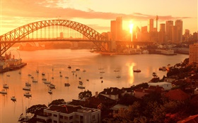 Sydney, Australia, city sunset, bridge, river, buildings, warm sun HD wallpaper