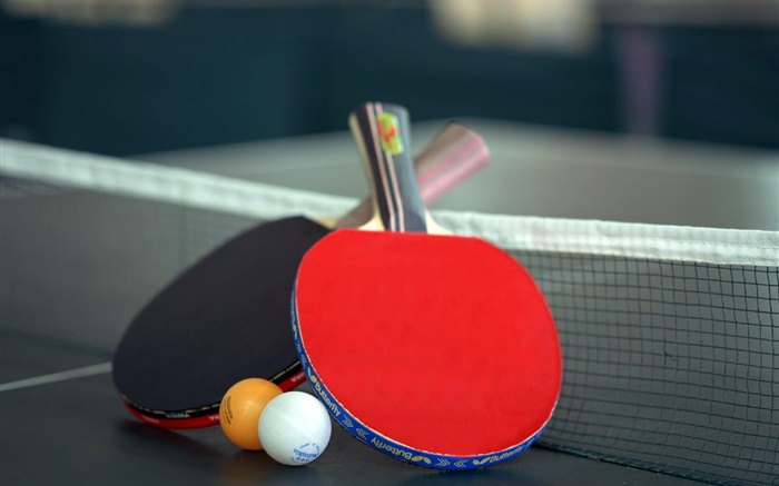 Table tennis and racket Wallpapers Pictures Photos Images