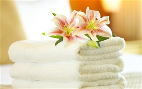 Towels, orchid, still life close-up HD wallpaper