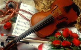 Violin, red roses, music HD wallpaper