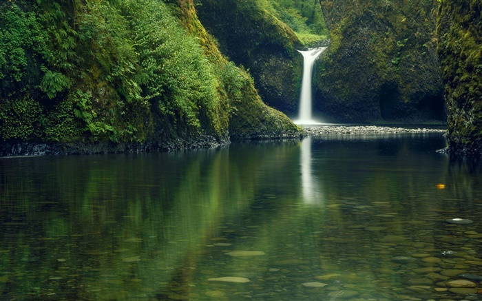 Waterfall, clear water Wallpapers Pictures Photos Images