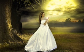 White dress fantasy girl, dusk, magical HD wallpaper