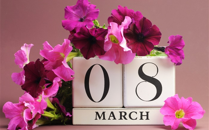 8 March, Women's Day, pink petunias flowers, date Wallpapers Pictures Photos Images