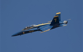 Blue Angels, airplane, flight in sky HD wallpaper