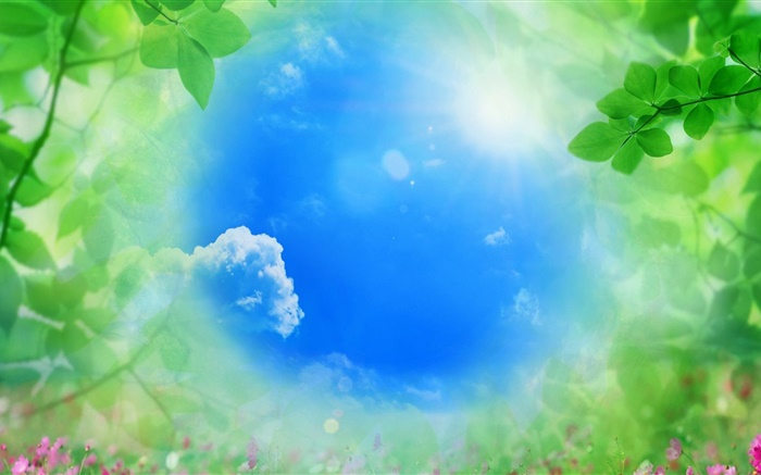 Blue sky, green leaves, sun, summer Wallpapers Pictures Photos Images