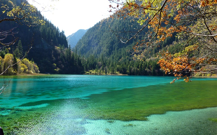 China, Jiuzhaigou National Park, lake, mountains, trees Wallpapers Pictures Photos Images