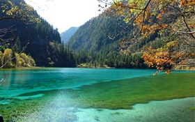 China, Jiuzhaigou National Park, lake, mountains, trees HD wallpaper